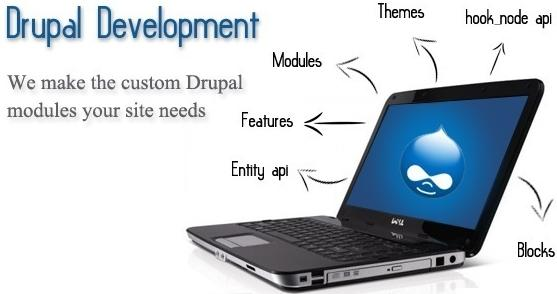 Website Design in delhi ncr, Website Development in delhi ncr, Search Engine Otimization in delhi ncr
