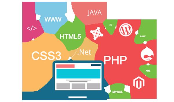 Website Designing Company in Greater Noida   Website